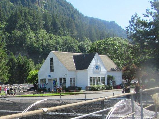Cascade Locks, OR: Bonneville Gift Store, Columbia River Gorge, Oregon