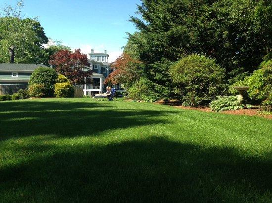 Captain's Manor Inn: Backgarden