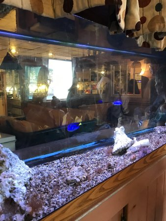 Sneads Ferry, NC: Nice Fish Tank at Entrance