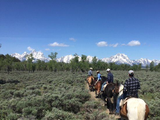 Moose Head Ranch: Riding and views