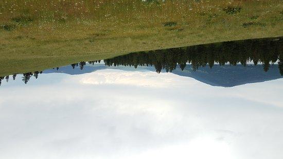 Lakeside, Монтана: Wild Horse Island on Flat Head Lake