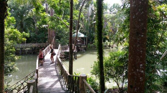 Снимок Sepilok Jungle Resort