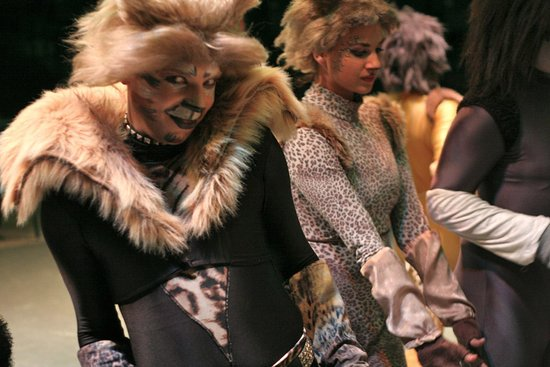 Peoria, IL: CATS (The Musical)
