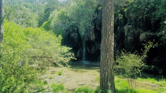 Nacimiento Del Rio Cuervo : Paseo