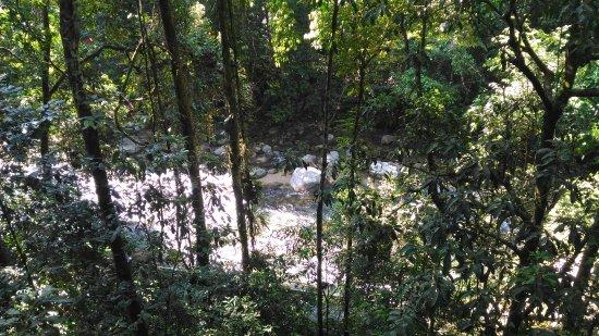Kulim, Malaysia: Sungai Sedim Recreational Forest
