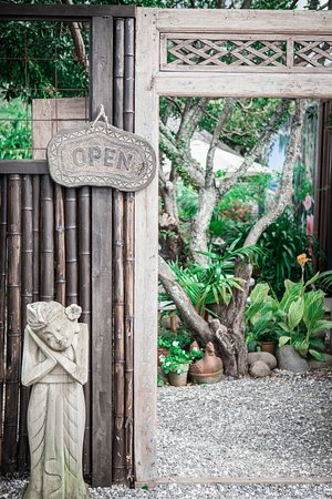 Waihi Beach, Nieuw-Zeeland: Come on in to our Secret Garden.