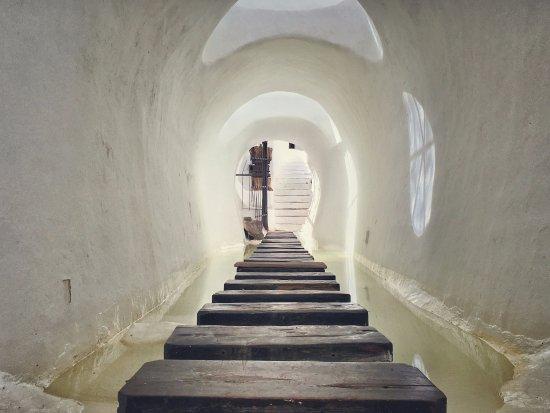Lagomar Museum : El pasillo flotante