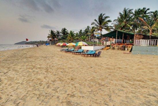 Sun Loungers on Clean Anjuna Beach
