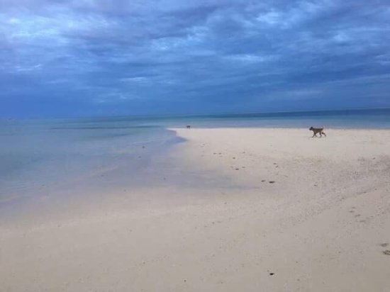 Leleuvia Island, Fiji: photo0.jpg