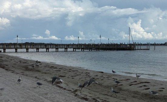Gulfport Beachfront  and Pier outside Gulfport Casino Ballroom
