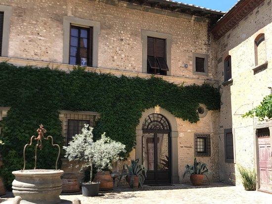 Montespertoli, Italia: ...meraviglia Toscana, vino super!