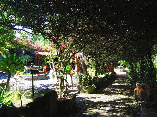 Tumbabiro Photo