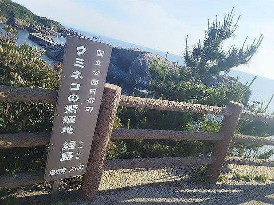 Hinomisaki Coast: DSC_2158_large.jpg