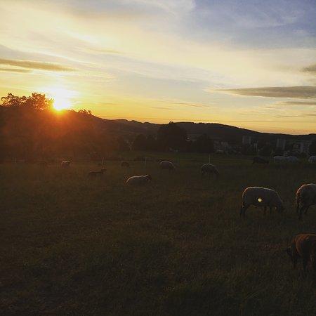 Nove Mesto na Morave, Çek Cumhuriyeti: Zajímavý výlet