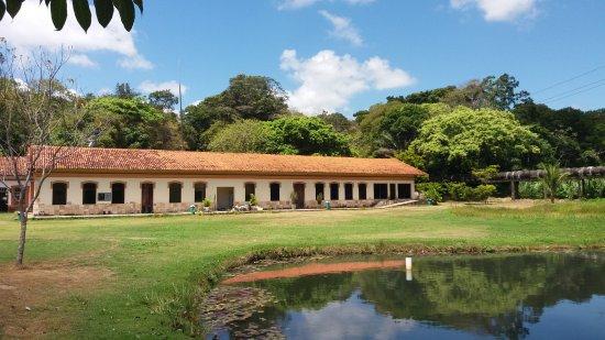 Jardim Botânico - Benjamin Maranhão