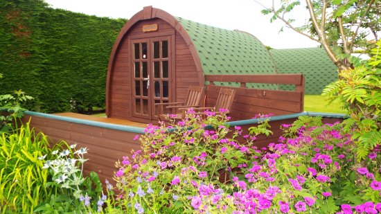 Lundin Links, UK: Heather Posh Pod, 2 single beds, fridge, microwave, kettle & TV