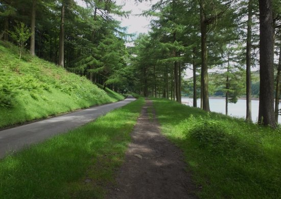 Parco nazionale di Peak District, UK: One of the routes round Derwent Dam