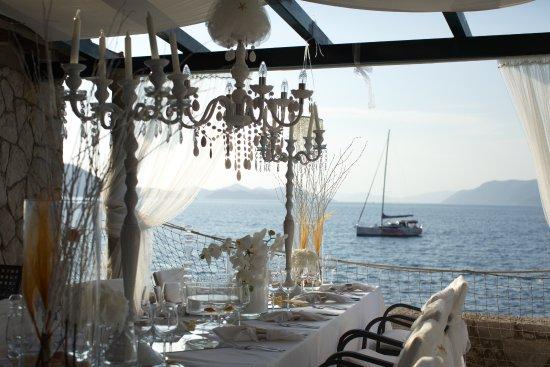 Villa Rose Restaurant Kolocep Island Restaurant Reviews
