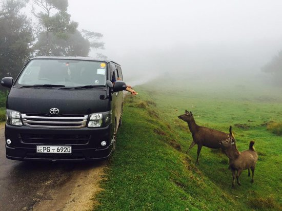 Kandy Budget Taxi