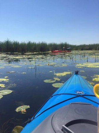 Smiths Falls, Canada: Kayaking on the beautiful Rideau Canal, a  UNESCO World Heritage Site.