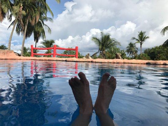 Montezuma Yoga : The pool at Los Mangos
