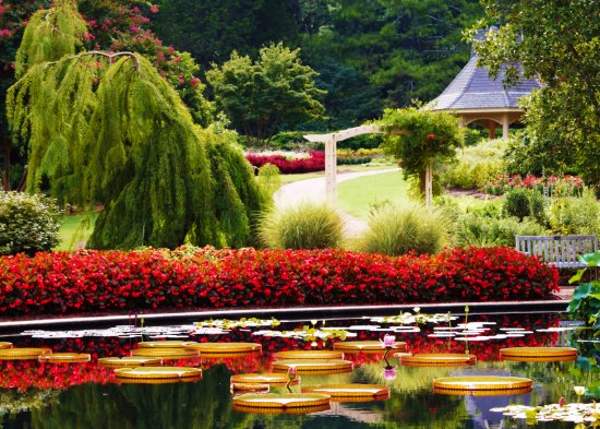 Captivating The 10 Closest Hotels To Huntsville Botanical Garden   TripAdvisor   Find  Hotels Near Huntsville Botanical Garden