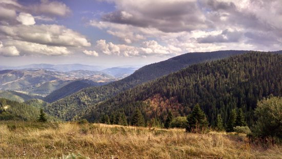 Kopaonik National Park