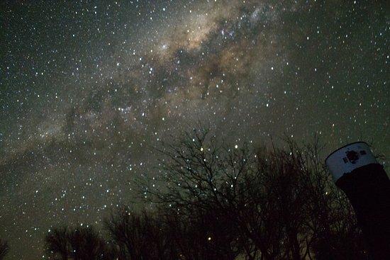 Atacama Cygnus