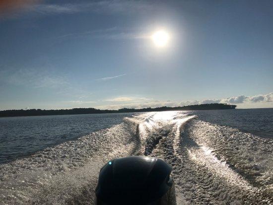 Daufuskie Island, SC: Good Bye Daufuskie
