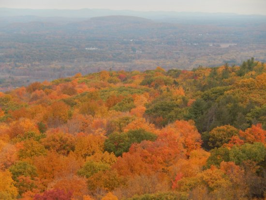 Talcott Mountain State Park: View from the ridge, October 24th