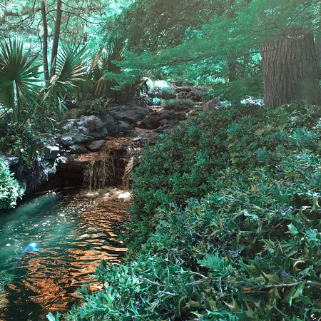 Botanical Gardens Fort Worth Picture Of Fort Worth Botanic Garden Fort Worth Tripadvisor