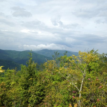 Great Smoky Mountains National Park, NC: beautiful views
