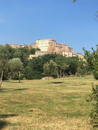 Attigliano, Italia: photo3.jpg