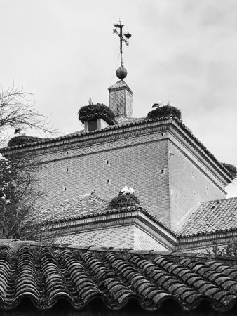 La Morenica del Bierzo: photo3.jpg