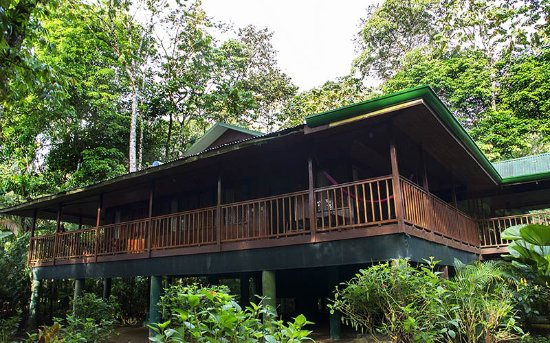 Selva Verde Lodge : RIVER ROOMS