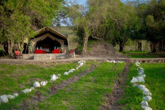 Oldarpoi Mara Camp Photo