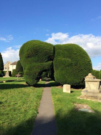 Painswick, UK: photo3.jpg