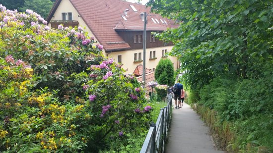 Rathen, Germany: Delicious food in a,beautiful setting