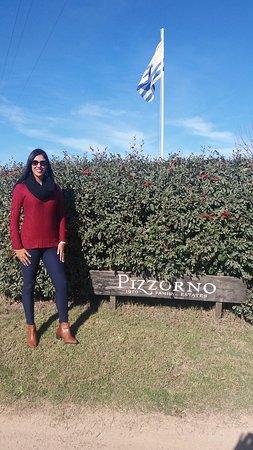Pizzorno Family Estates: Na entrada da vinicola