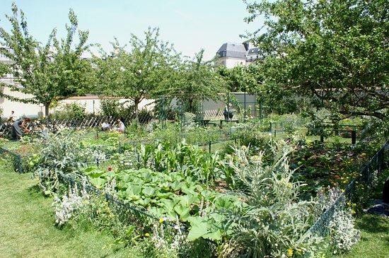 Jardin catherine labour paris jardin catherine for Jardin catherine laboure
