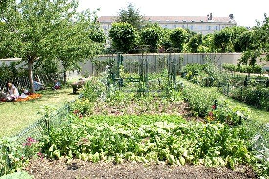 Jardin catherine labour paris jardin catherine for Catherine de jardin