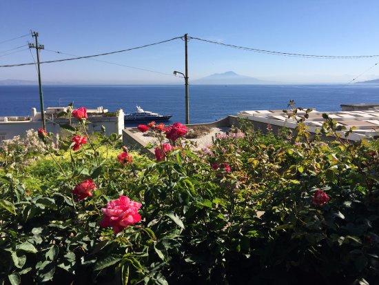 Villa Marina Capri Hotel & Spa: Meerblick