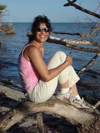 Florida City, FL: While I am sitting on a dead mangrove tree, you can see how beautiful Florida bay is to the sout