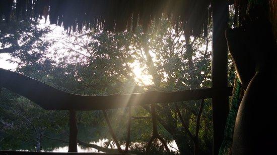 Cotton Tree Lodge Aufnahme