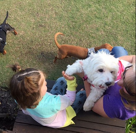 Swan Valley, Australia: High 5ing with the fur babies