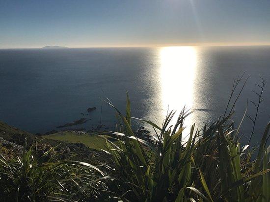 Mount Maunganui, Nueva Zelanda: photo2.jpg