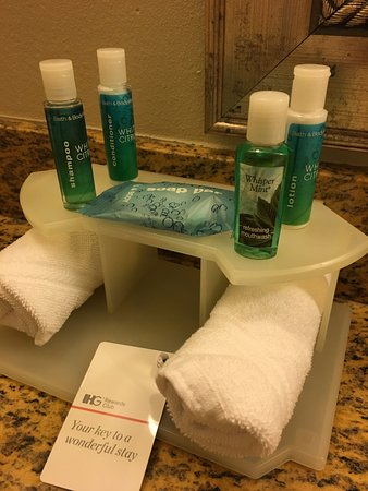 Lakewood  Pierce County, WA: Your bathroom necessities