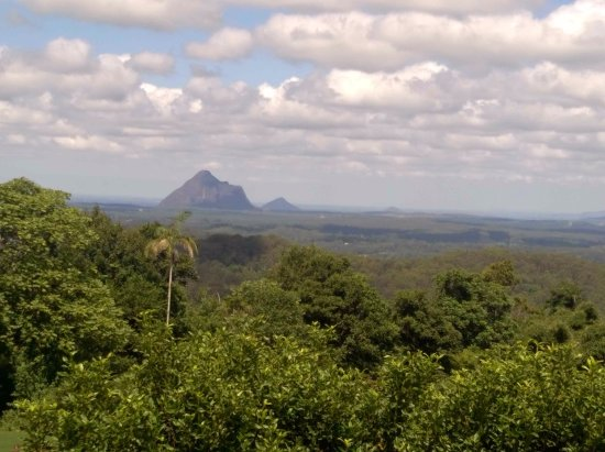 Maleny, Australia: View from our picnic table