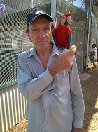 Maleny, Australia: Worth visiting the bird sanctuary (extra cost)