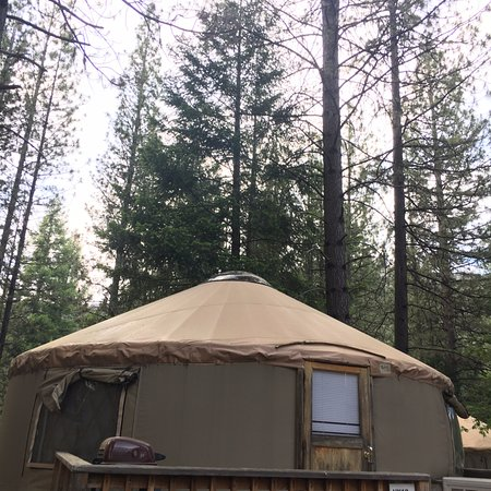 Yosemite Lakes RV Resort: yurt
